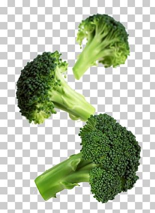 Romanesco Broccoli Cauliflower Vegetable Cabbage PNG