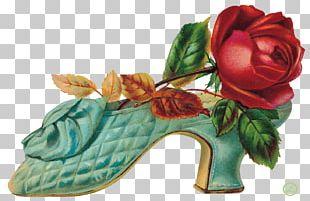 Flower Garden Roses Footwear Floral Design PNG