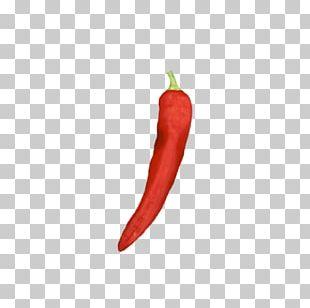 Tabasco Pepper Bird's Eye Chili Serrano Pepper Cayenne Pepper Poblano PNG