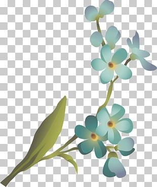 Cut Flowers Floral Design Plant Stem Petal PNG