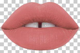 Lime Crime Velvetines Lipstick Cosmetics Lip Gloss Eye Shadow PNG