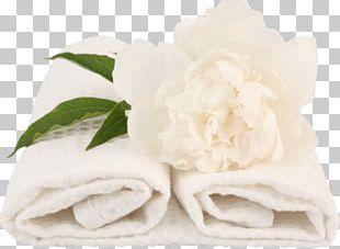Banya Towel Laundry Washing Hotel PNG
