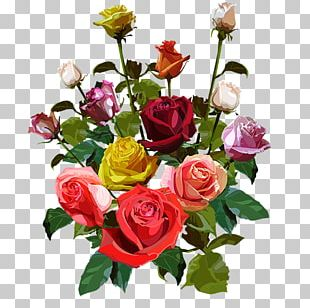 Garden Roses Cut Flowers Flower Bouquet Cabbage Rose PNG