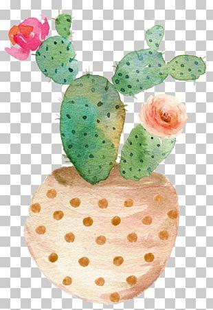 Succulent Plant Watercolor Painting Printing Cactaceae PNG
