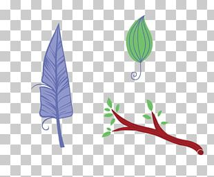 Bird Feather Leaf PNG