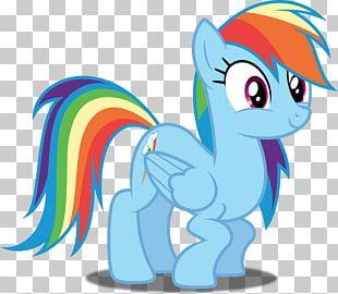Rainbow Dash Pinkie Pie Twilight Sparkle Applejack PNG