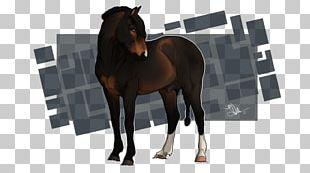 Stallion Mustang Halter Mare Colt PNG