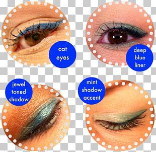 Eyelash Extensions Eye Shadow Cosmetics Color PNG