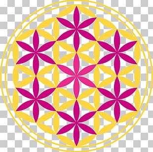 Overlapping Circles Grid Graphics Symbol Sacred Geometry Illustration PNG