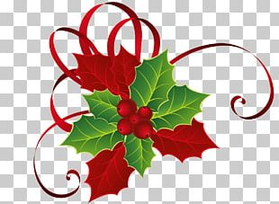 Holly Mistletoe Christmas PNG