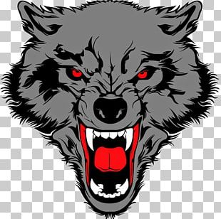 Gray Wolf Drawing PNG