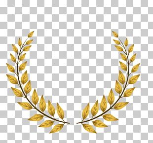 Logo Award PNG