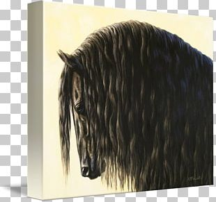 Friesian Horse Painting Canvas Print Mustang Stallion PNG
