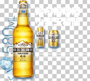 Lager Beer Bottle Harbin Brewery Harbin Beer PNG