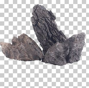 Rock Brown Google S PNG