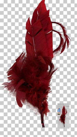 White Feather Red Color PNG