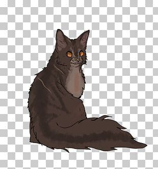 Raggedstar Into The Wild Black Cat Maine Coon Brokenstar PNG