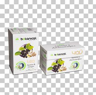 Herbal Tea Chamomile Herbal Tea Matricaria PNG