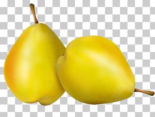 Vecteur Pear PNG