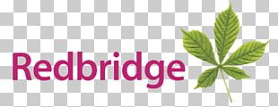 London Borough Of Redbridge PNG