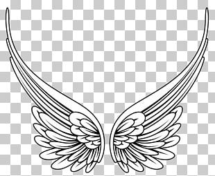 Angel Wing PNG