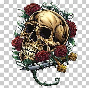 Human Skull Symbolism Rose Bone Calvaria PNG