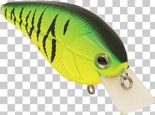 Spoon Lure Green Fish PNG