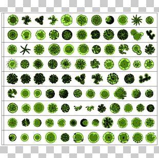 Landscape Architecture Landscape Design Architectural Plan Landscaping PNG