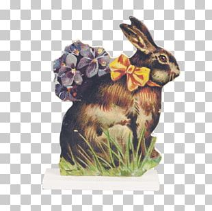 Easter Bunny Rabbit Happy Easter! Hare PNG