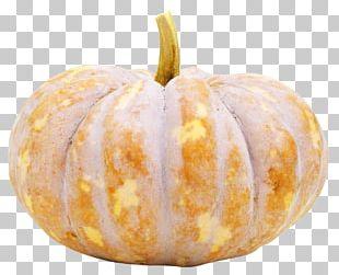 Pumpkin Seed Pumpkin Seed Cucurbita Pepo Vegetable PNG