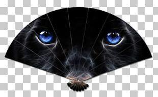 Jaguar Leopard Black Panther Kitten Cat PNG