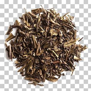 Oolong Green Tea Qilan Tea Bancha PNG