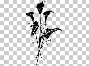 Twig Desktop Plant Stem PNG