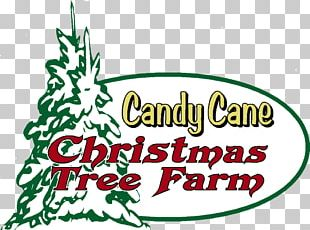 Tree Farm Candy Cane Christmas Tree PNG