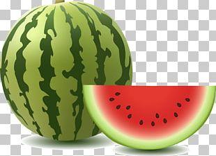 Watermelon Graphics Illustration PNG