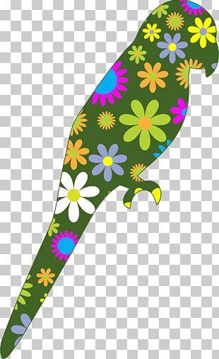Parrot Bird Flower PNG