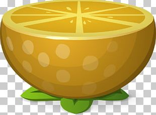Lemon-lime Drink Juice Key Lime Sweet Lemon PNG