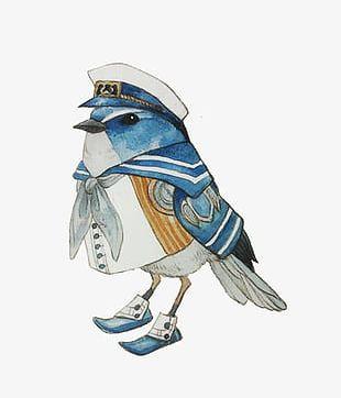 Cartoon Funny Birds PNG