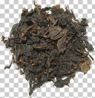Green Tea Oolong Assam Tea Nilgiri Tea PNG