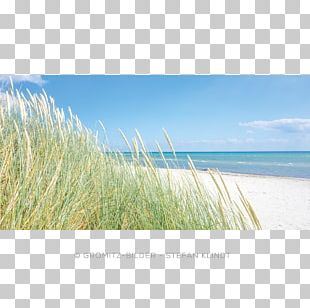 Lensterstrand Dune Calendar Coil Binding Beach PNG