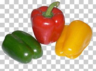 Bell Pepper Chili Pepper Black Pepper Pizza Vegetable PNG