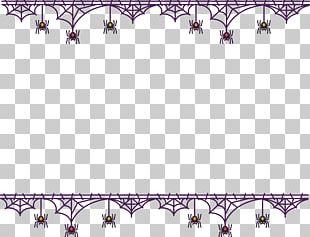 Spider Web Black House Spider PNG