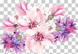 Flower Purple Stock Photography Blue PNG