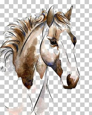 American Paint Horse Watercolor Painting Horses In Art Equestrianism PNG