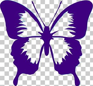 Butterfly Black And White PNG