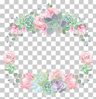 Floral Design Succulent Plant PNG