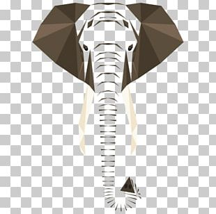 Graphic Design Elephant Graphic Arts PNG