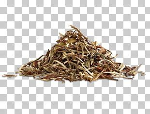 White Tea Golden Monkey Tea Nilgiri Tea Dianhong PNG