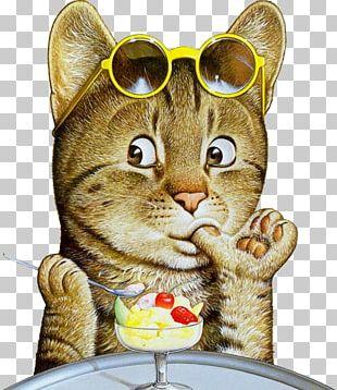 Kitten Cat Art Painting Illustration PNG