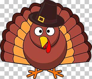 Black Turkey Pilgrim Thanksgiving PNG